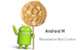 Besturingssystemen: Android M