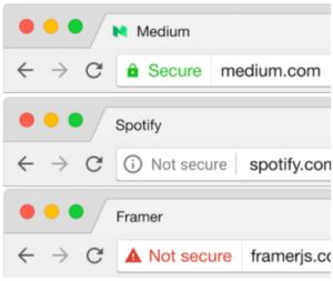 SSL browser